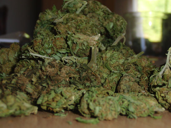 Sativa weed