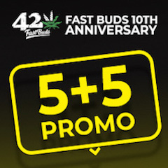 Fast Buds Autoflower Cannabis Seeds
